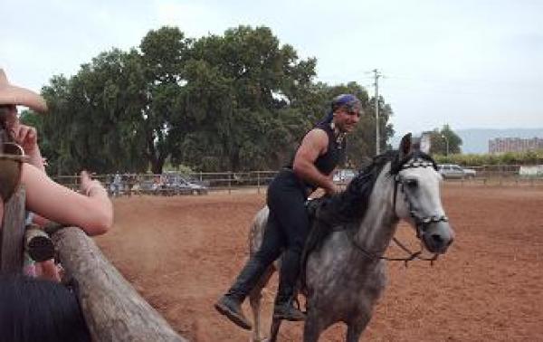 Acrobazie Cavallo